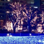 彼女・奥様にディズニー「クリスマス・ファンタジー」でサプライズ!